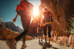 Hiker with backpacks Stock Photography