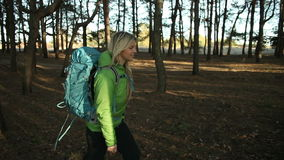 Hiker blonde woman walking hiking in forest with backpack stock footage