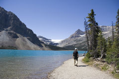 Hiker on bow lake royalty free stock photos