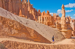 Hiker in Bryce Canyon National Park,  Utah, USA Royalty Free Stock Photo