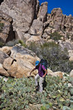Hiker in cactus patch. Stock Images
