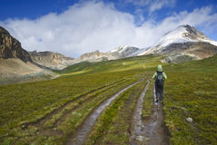 Hiker in the canadian rockies Stock Photos