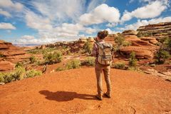 Hiker in Canyonlands National park, needles in the sky, in Utah, USA stock images