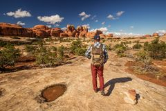 Hiker in Canyonlands National park, needles in the sky, in Utah, USA royalty free stock photography