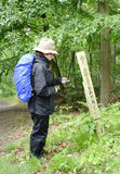 Hiker Checking the Direction. Lady Hiker checking the direction on a Compass on a woodland footpath in England in the rain Royalty Free Stock Photo