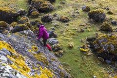 Hiker climbing a boulder in El Altar Stock Photo