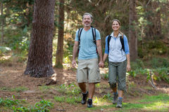 Hiker couple hiking in forest Royalty Free Stock Image