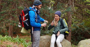 Hiker couple interacting with each other in forest. At countryside, 4k stock video footage