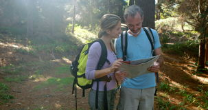 Hiker couple interacting while looking at map. In forest, 4k stock footage