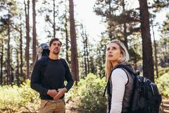 Hiker couple trekking in forest Stock Photography