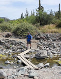 A Hiker Crosses Cave Creek, Spur Cross Ranch Conservation Area Royalty Free Stock Photos