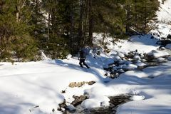 Hiker crosses snow-covered mountain river. At sun winter day after snowfall. Carpathian Mountains, Ukraine Royalty Free Stock Photo