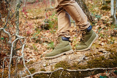 Hiker crossing on fallen tree trunk Stock Photography