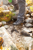 Hiker crossing a river. legs in boots Stock Photos