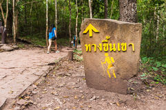 Hiker Crossing sign along road in the Forest Royalty Free Stock Photos