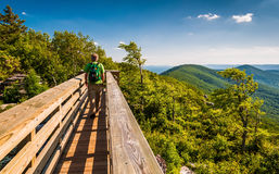Hiker crossing a walking bridge on Big Schloss, in George Washin Royalty Free Stock Image