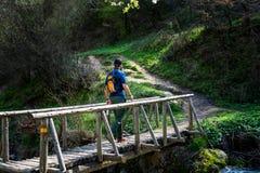 Hiker crossing the wooden bridge outdoors stock photos