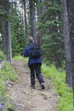 Hiker with a daypack. On a trail in the forest - adobe RGB Royalty Free Stock Photography