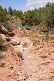 Hiker descending trail. Near Huber wash,  on the Chinle TrailZion National Park, Utah Stock Images