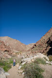 Hiker in desert canyon Royalty Free Stock Images