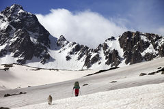 Hiker with dog at spring snow mountains Stock Photo