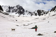 Hiker with dog at spring snowy mountains in cloudy morning Stock Images