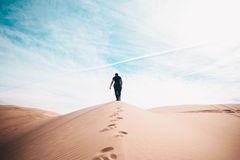 Hiker on dune in desert Royalty Free Stock Photos