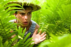 Hiker & ferns.tropical climate Royalty Free Stock Photos