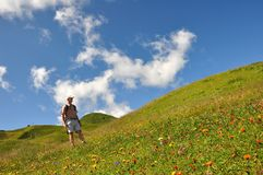 Hiker in flower meadow Royalty Free Stock Photos