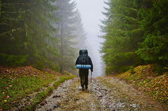 Hiker Tourist Tramp in Foggy Mountain Forest Royalty Free Stock Photography