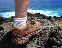 Hiker foot Stock Photography