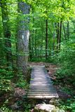 A Hiker Footbridge along the Appalachian Trail Stock Images