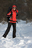 Hiker in forest Stock Images