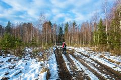 A hiker on a forest dirt road, covered with snow. A hiker on a forest dirt road, covered with snow on a Sunny autumn day Royalty Free Stock Image