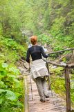 Hiker in a forest Royalty Free Stock Images