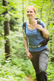 Hiker in a Forest Stock Images
