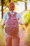 Hiker on a Forest Trail at Sunset Royalty Free Stock Image
