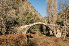 Hiker on Genoese bridge in the Tartagine valley in Corsica. A hiker walks over an ancient stone Genoese bridge crossing a stream in the mountains of the stock images