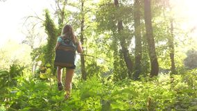 Hiker girl tourist makes his way through thicket. teenager adventures . happy girl traveler with a backpack spins in stock video