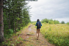 Hiker girl walking on footpath in summer forest Royalty Free Stock Photo
