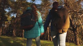 Hiker girls in a pine forest. Happy family travels. Mother and daughter travellers walking through woods with a backpack stock footage
