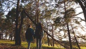 Hiker Girs в сосновом лесе турист наслаждается жизнью и природой перемещение приключения каникул Счастливые перемещения семьи o видеоматериал