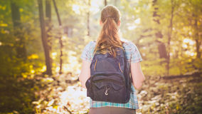 Hiker Going into a Forest. A hiker with a backpack heads into a forest on a summer afternoon. Photographed from behind Royalty Free Stock Photo