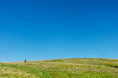 Hiker on the green plain under blue skies Stock Photography