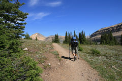 Hiker on Helen Lake Trail Royalty Free Stock Photo