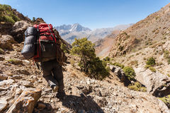 Hiker in high mountains. Royalty Free Stock Image