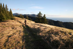Hiker in the hills of Big Sur, California, USA. Sunset over a meadow in California Royalty Free Stock Images