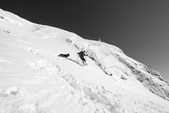 Hiker jumping in the fresh snow playing with his dog  on the top. Black and white Royalty Free Stock Photo