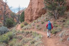 Hiker in Kodachrome Basin state park in Utah, USA royalty free stock images