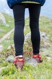 Hiker legs Stock Photography